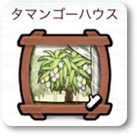 なめこの巣タマンゴーハウス