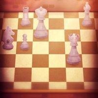 迷い猫の旅チェス
